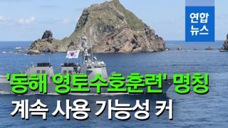 [영상] '육해공 입체방어'…군, 두 번째 독도방어훈련 시기 검토할 듯