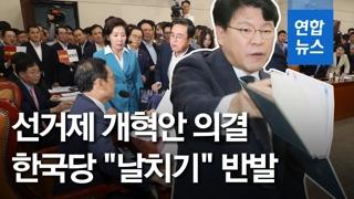 """[영상] '고성 난무' 국회 정개특위, 선거법 강행 처리…한국당 """"날치기.."""