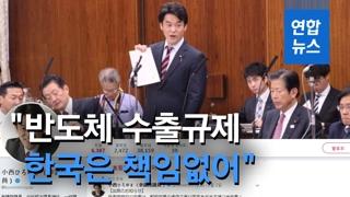 """[영상] 일본 의원 """"반도체 수출규제, 한국은 책임없어"""""""