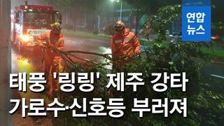 [영상] '링링' 제주 강타…1만3천여가구 정전, 가로수ㆍ신호등 부러져