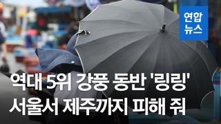 [영상] 강풍 역대 5위 '링링' 북한 관통…수도권 밤까지 강한 바람