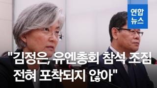"""[영상] 강경화 """"'트럼프 평양 초청 김정은 친서 있었다' 상세 설명들어.."""
