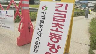 """돼지열병에 9·19 행사도 직격탄…""""대폭 축소"""""""