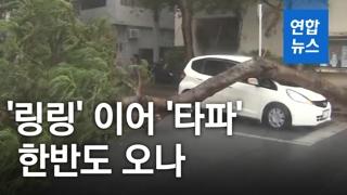 [영상] 태풍 '링링' 이어 '타파' 오나…주말 강한 비바람