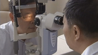 """WHO """"22억명 시력 장애…야외 활동 늘려야"""""""
