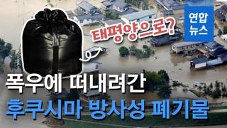 [영상] 폭우로 떠내려간 후쿠시마 방사성 폐기물, 태평양으로?