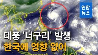 [영상] 소형급 태풍 제20호 '너구리' 발생…한국엔 영향 없어