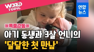 [영상] 끌어안고 뽀뽀하고…세살배기 언니, 아기 동생 처음 만난 날