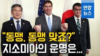 """[영상] 한미일 국방 손잡고 """"동맹, 동맹 맞죠?""""…지소미아의 운명은"""