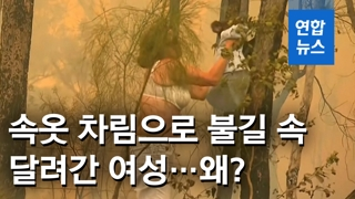 [영상] 코알라 구하려 티셔츠 벗어 불길 속 달려든 여성