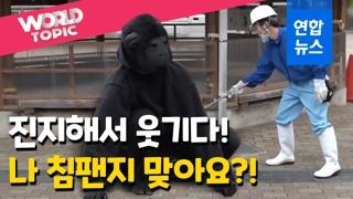 """[영상] """"침팬지가 탈출했다!""""…동물원 탈출 동물 포획 대작전"""
