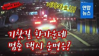 [블랙박스] 철길 건널목에 멈춘 택시…경고음 울리는데 '요지부동'