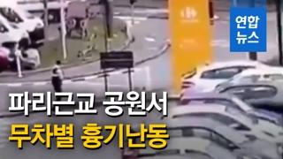 [영상] 프랑스 파리근교 공원서 무차별 흉기난동…3명 사상