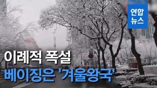 [영상] 이례적 폭설에 베이징은 '겨울왕국'…도로 정체·항공편 결항도