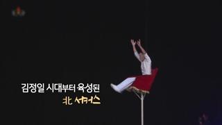 [영상구성] 북한의 서커스