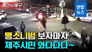 [영상] '양심불량' 음주뺑소니범…발 빠른 제주시민 손에 '덥석'