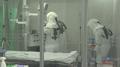 [속보] 부산 해운대백병원 응급실 폐쇄…40대 환자 역학조사