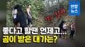 [영상] 사람 끌어안고 셀카 찍어주던 '스타 곰'의 최후는?