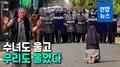 """[영상] """"차라리 날 쏴라"""" 무릎꿇은 수녀에 미얀마 경찰 총 내렸다"""