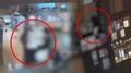 외교부, 벨기에대사관에 '옷가게 폭행' 사과 권고