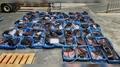 불법 포획 고래고기 64자루 운반 선장 등 검거