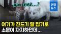 [영상] '똑똑'…파출소 찾아와 얼굴 내민 은여우의 사연은?