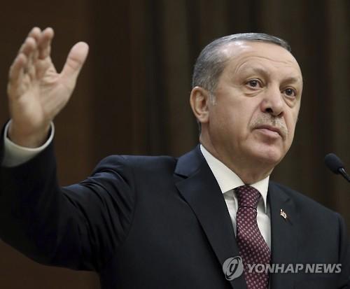 터키, 내년 초여름 '대통령제 개헌' 국민투표 예상