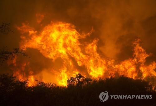美 캘리포니아에서 발생한 산불 현장