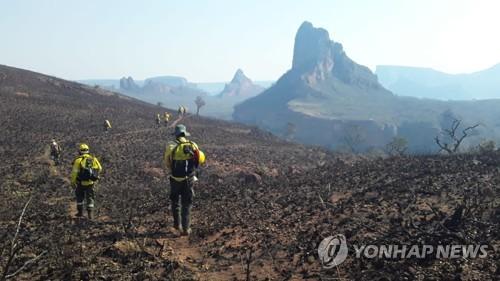 볼리비아도 산불로 몸살…동부 산불로 서울면적 10배 피해