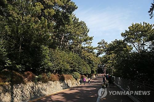 부산 해운대 동백섬 순환도로 [연합뉴스 자료사진]