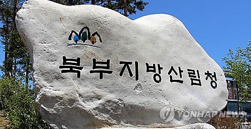 북부지방산림청 [연합뉴스 자료사진]