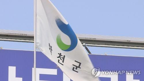 '특정 후보 선거운동' 화천군청 과장 징역형 집행유예(종합)