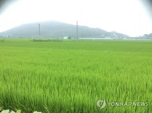 김포지역 농지 폐기물 불법 매립 '우후죽순'…환경 오염 우려