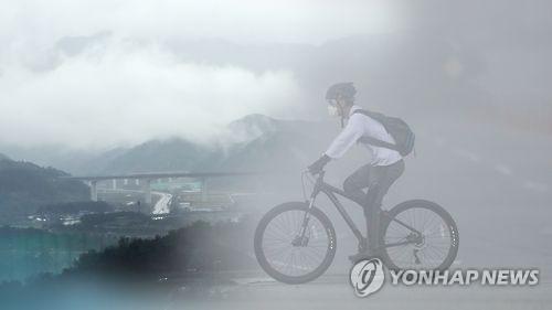 """진주·함안 등 경남 내륙 짙은 안개…""""교통안전 유의"""""""