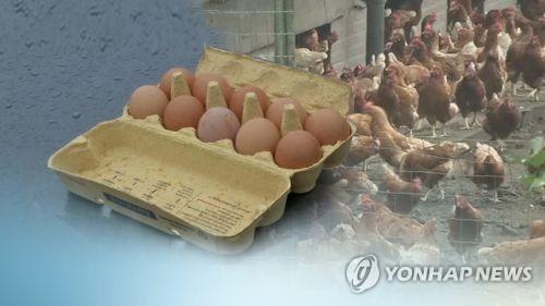 """""""인제 생산 계란은 안심하세요"""" 농약 잔류검사 모두 '적합'"""