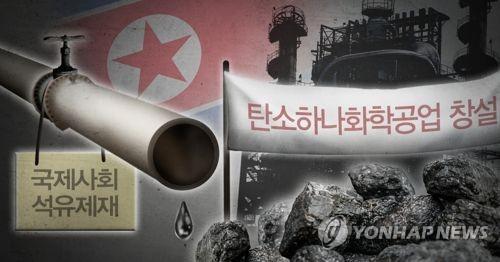 북한 석유 대신 석탄 활용 '탄소하나화학공업' 창설 (PG)