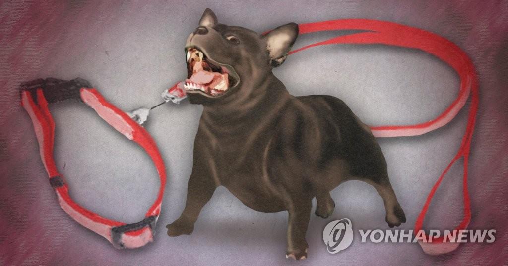 반려견 주인 공격(PG)  [제작 이태호] 일러스트
