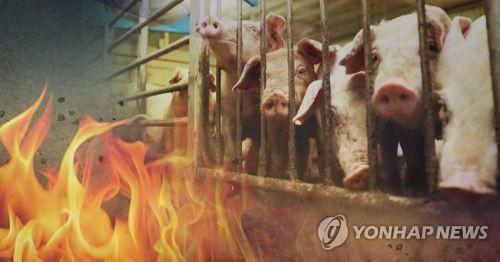 포천 돼지농장서 불…1억5천만원 피해
