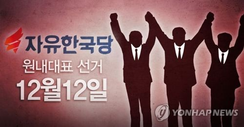 자유한국당 원내대표 선거 (PG)