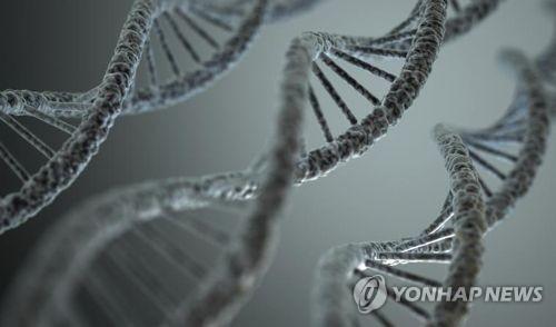 DNA 구조
