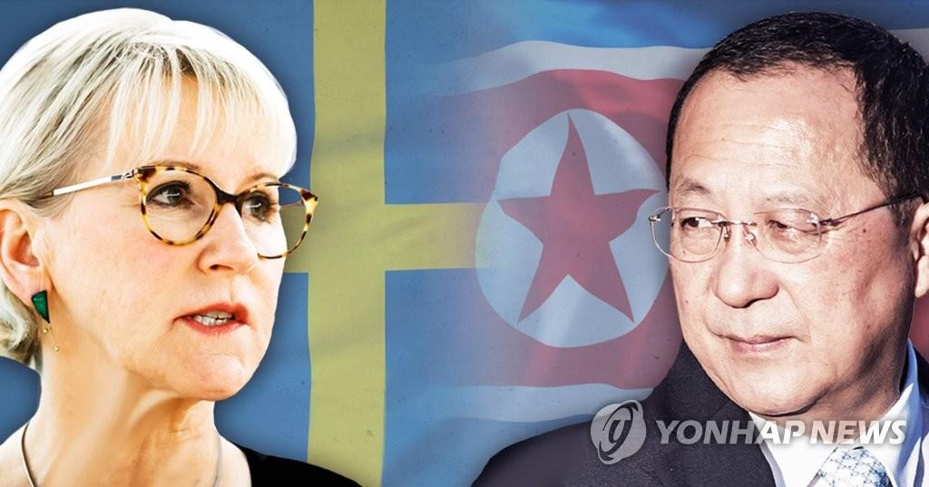 북한 리용호 - 스웨덴 마르고트 발스트룀 회담(PG)