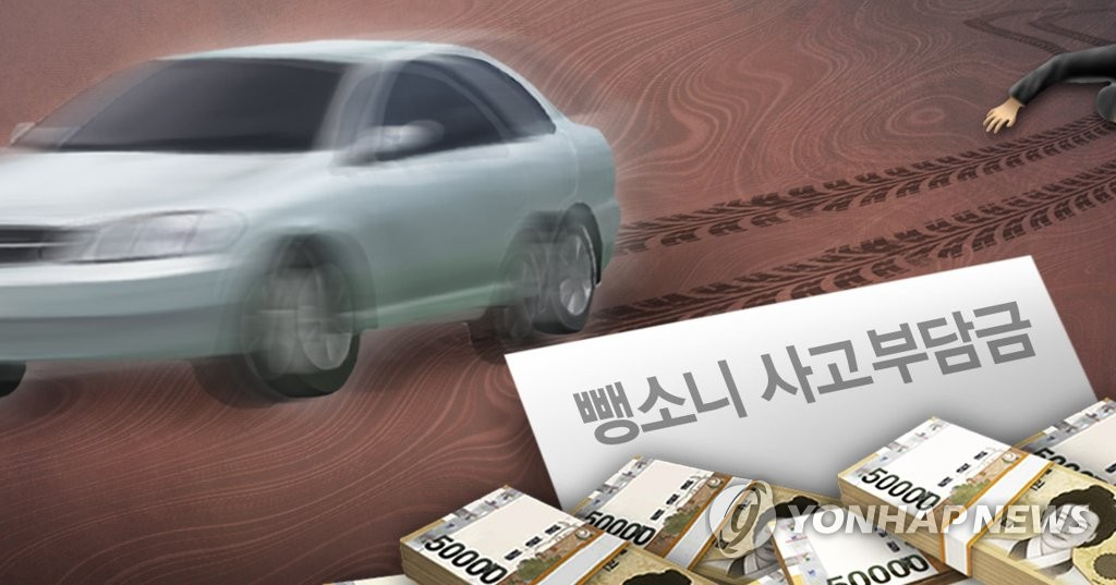 뺑소니 운전자 사고부담금(PG)