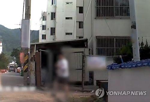 불법 개조 공기총으로 유기견 쏜 50대 검거