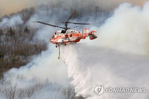태백산불 3시간여 만에 큰 불길 잡아…국유림 2천㎡ 태워(종합)