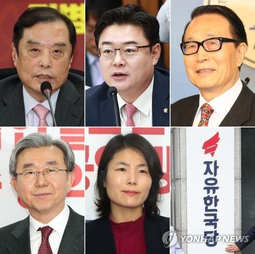 자유한국당 비상대책위원장 후보
