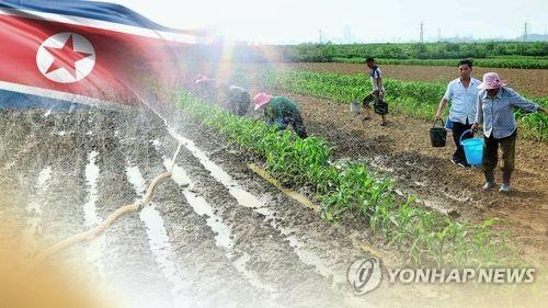 북한도 기록적 폭염, 농가피해 비상령(CG)