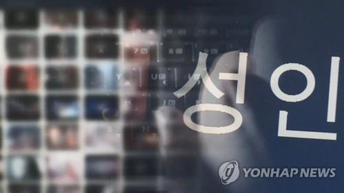 해외서버 둔 음란사이트 150곳 접속 차단…관계기관 공동대응