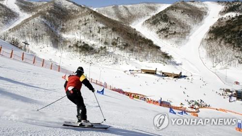 겨울아, 반갑다 온화한 12월 첫날 스키장·축제장 북적