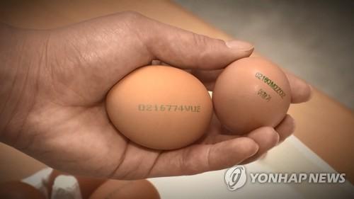 """""""달걀 선도 정확히 본다""""…오늘부터 껍데기에 산란일자 표시"""