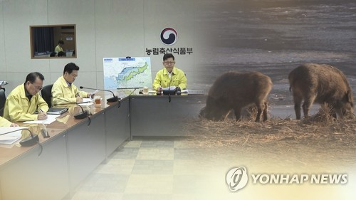 With no additional ASF case for 5th day, S. Korea in battle to stem possible spread via wild boars